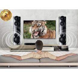 LG DVD HOME CINEMA - LHD677